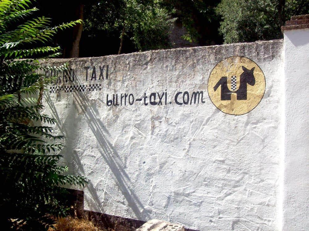 burro-taxi-granada-espana