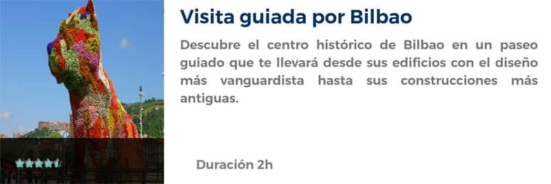 Visita guiada por Bilbao