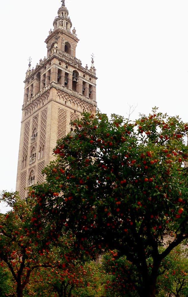 giralda-sevilla-andalucia-espana