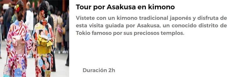 Tour por Asakusa en kimono