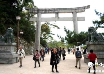 12 consejos para viajar a Japón