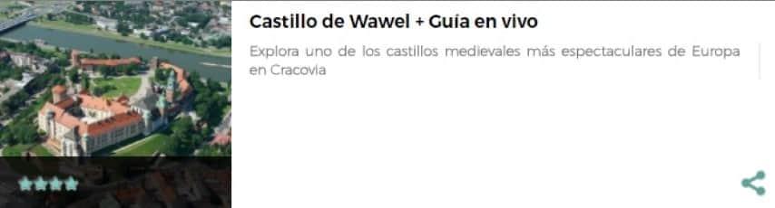 Visita Castillo de Cracovia