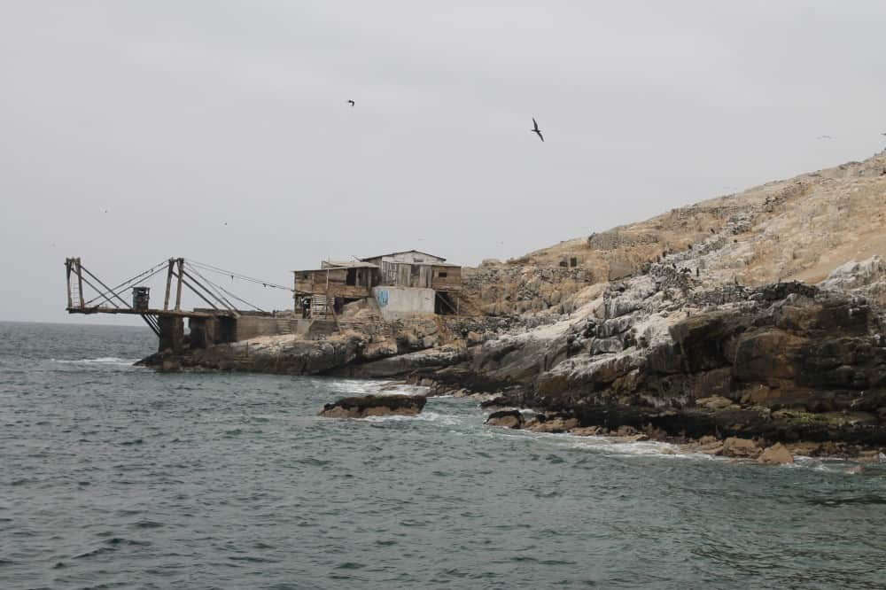 excursion-islas-palomino