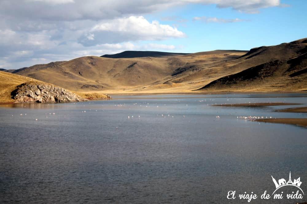 lago-lagunillas-peru (2)