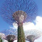 Árboles de Gardens by the Bay en Singapur