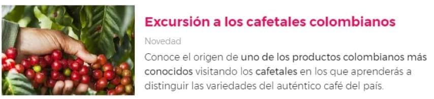 Excursión al Eje cafetero