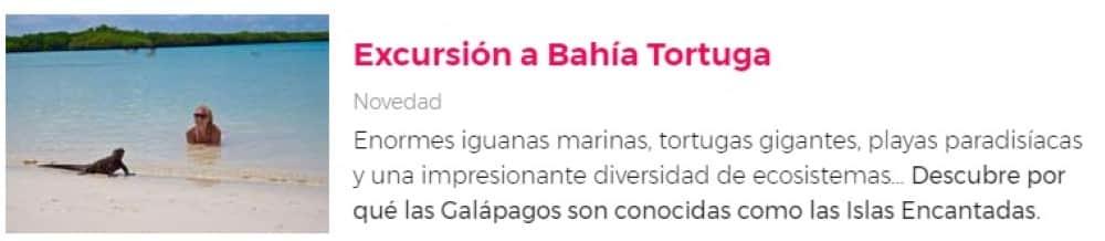 Excursión a Bahía Tortuga