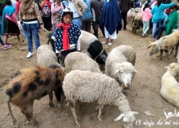 Mi viaje a Otavalo