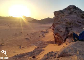 Excursión de un día al desierto de Wadi Rum