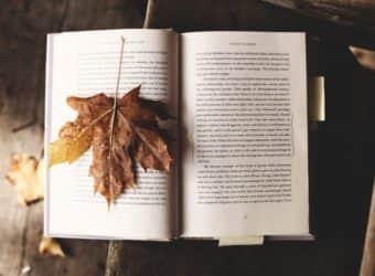 10 libros para viajar solo