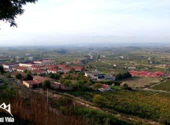 Mi viaje y recomendaciones para viajar a la Rioja Alavesa