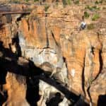 Bourke's Luke Potholes